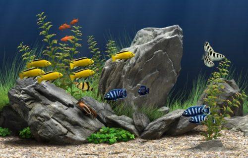 Inverter for Aquarium